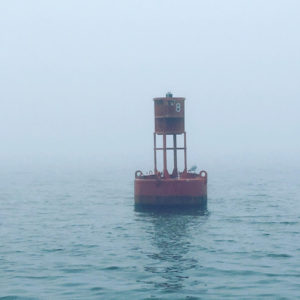 Foggy Traverse City Fishing Charter